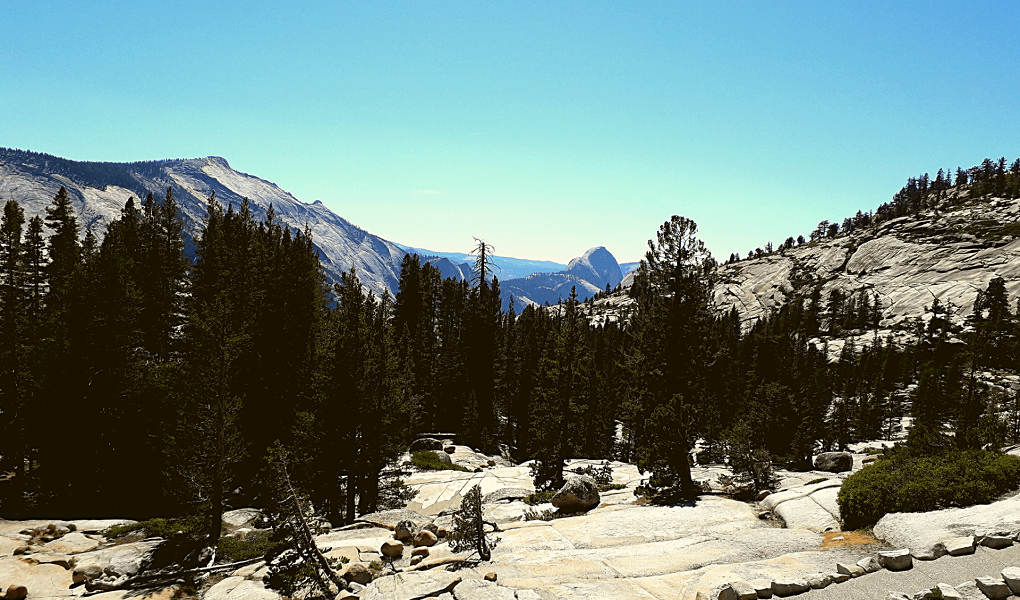 Olmsted Point Tioga Road