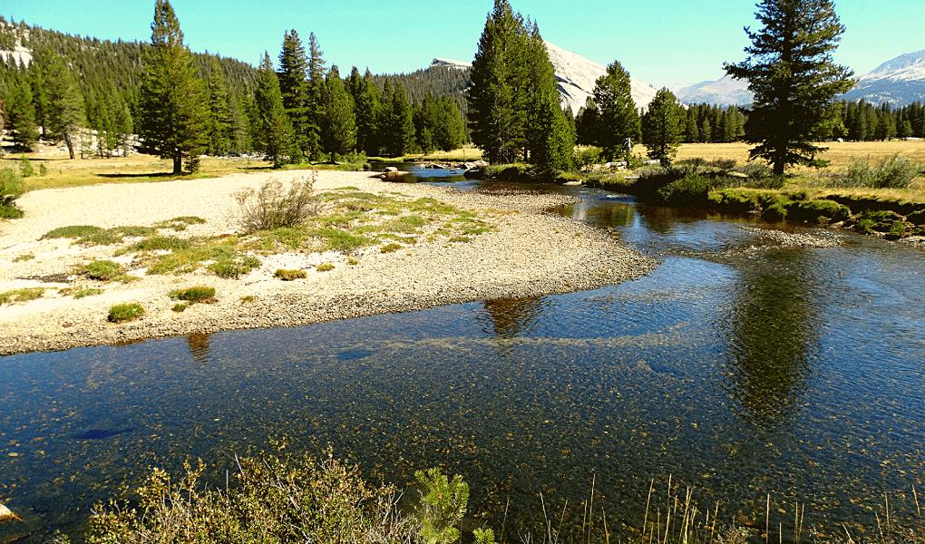 Tuolumne Meadows Merced River Tioga Road