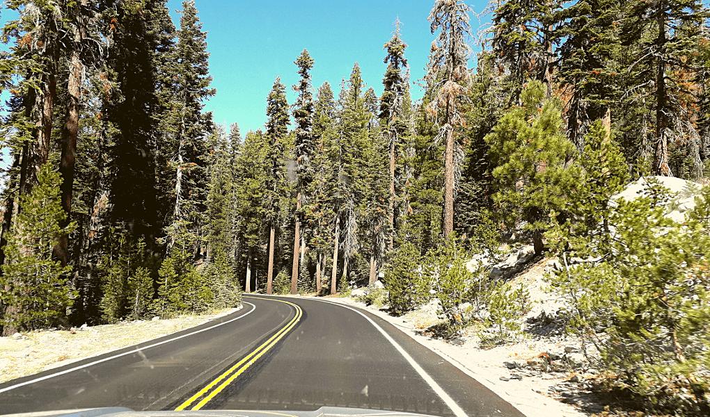 Tioga Road foto