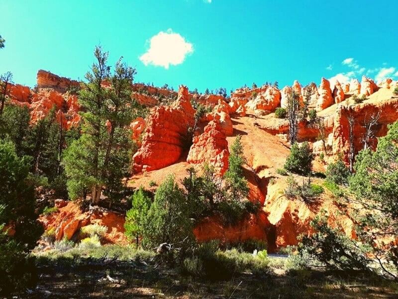 Casto Canyon hoodoo's