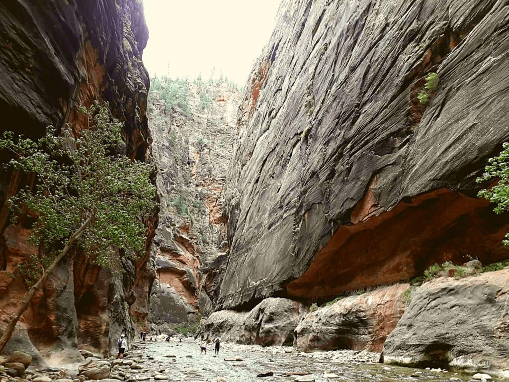 Narrows Hike Zion